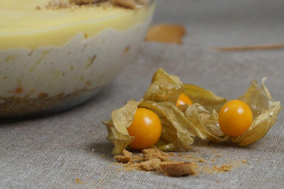 hedelmainen juustokakkumalja10